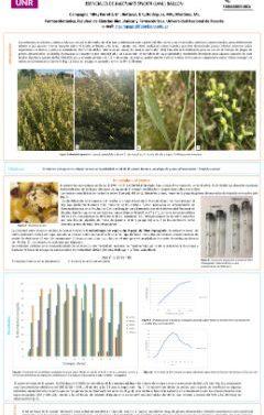 recursos biologicos - Maria Noel